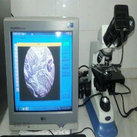 دوربین دیجیتال میکروسکوپی